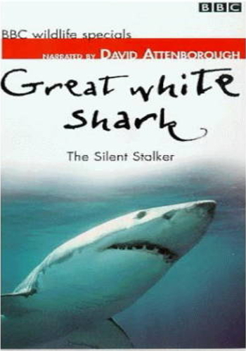 BBC: Great white shark