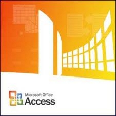 MS Access Based Organizer