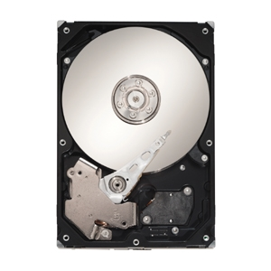 Maxtor DiamondMax 21 500GB Hard Drive